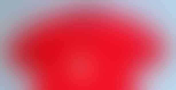 "POLO SHIRT BURBERRY [BRIT] ORIGINAL ""UPDATE"""