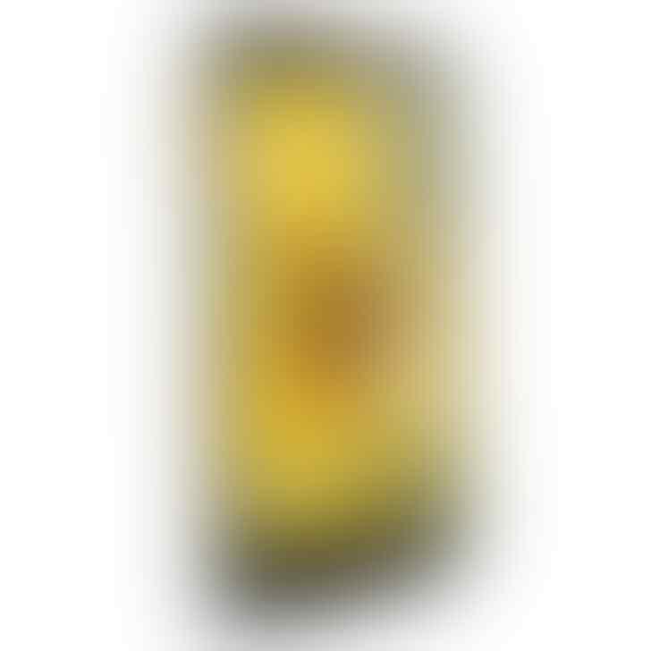 OPPO Find Muse – 4 GB – Putih