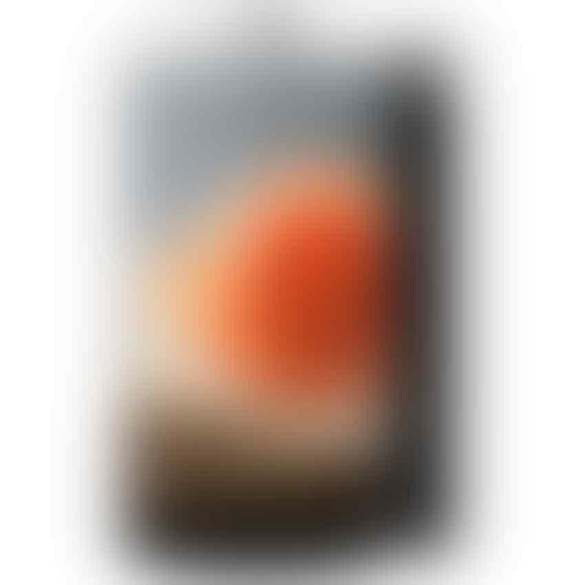 Oppo N1 – 16 GB – Putih