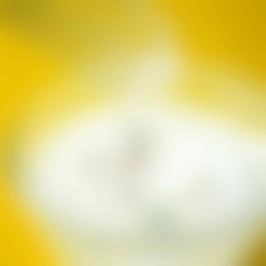 (NO REPSOL DIJAMIN) Makro Fotografi Yang Keren Gan