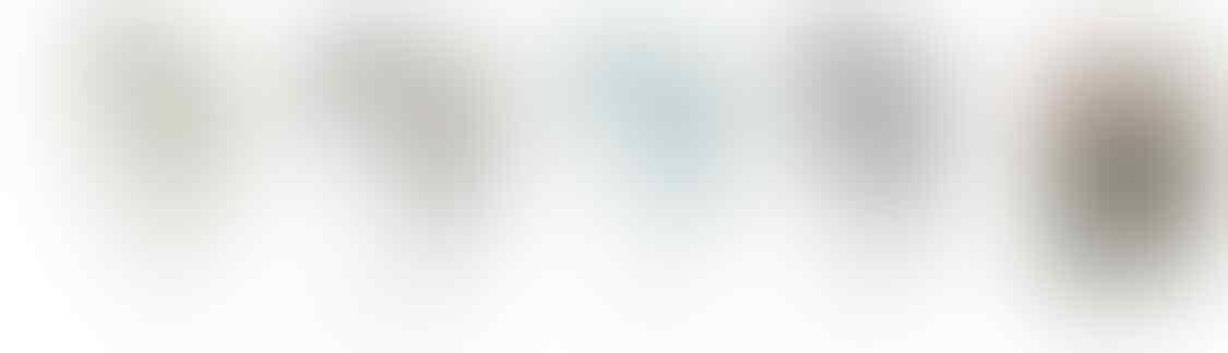 [stary] READY STOCK Sensonic EVI500 & EVI600 Earphone IEM with Mic Smartphone & iOS