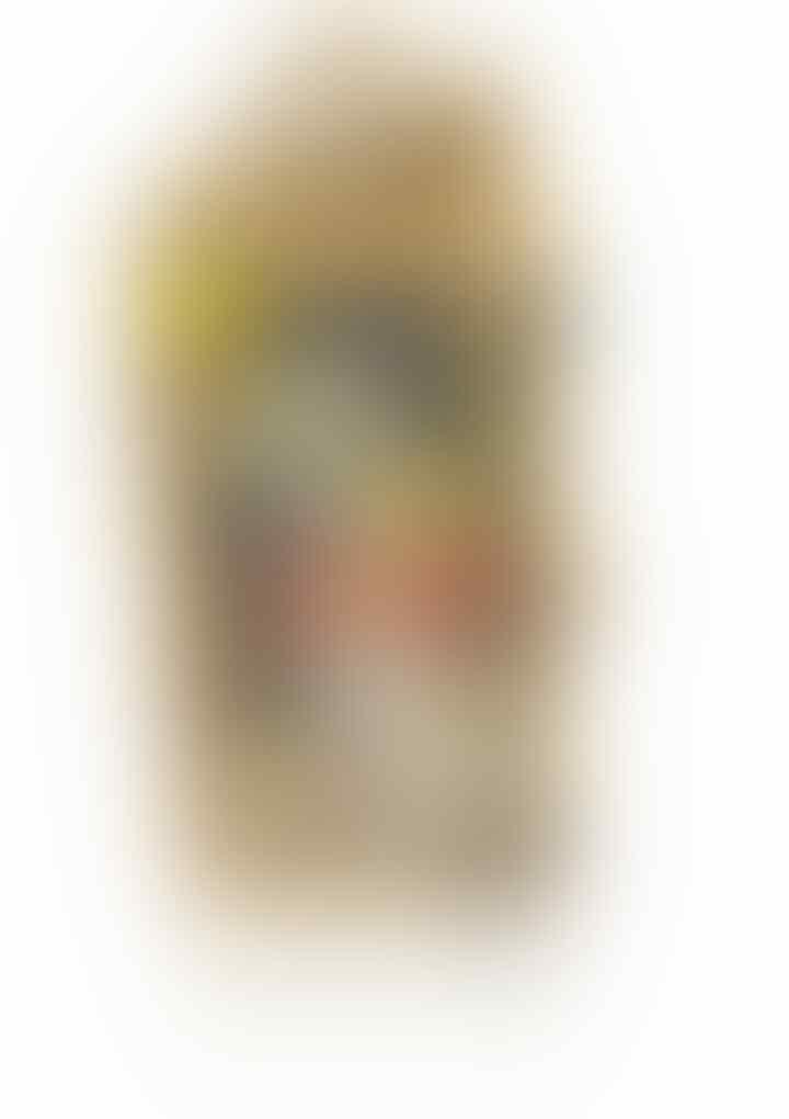 Soft Case iPhone 5/5S NEW ( ORIGINAL ) JINX