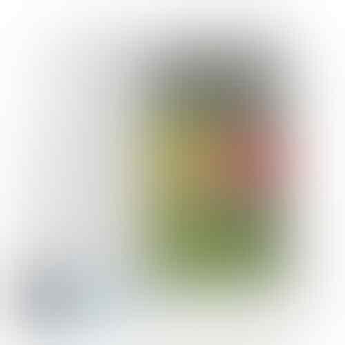 LG G Pro Lite - White