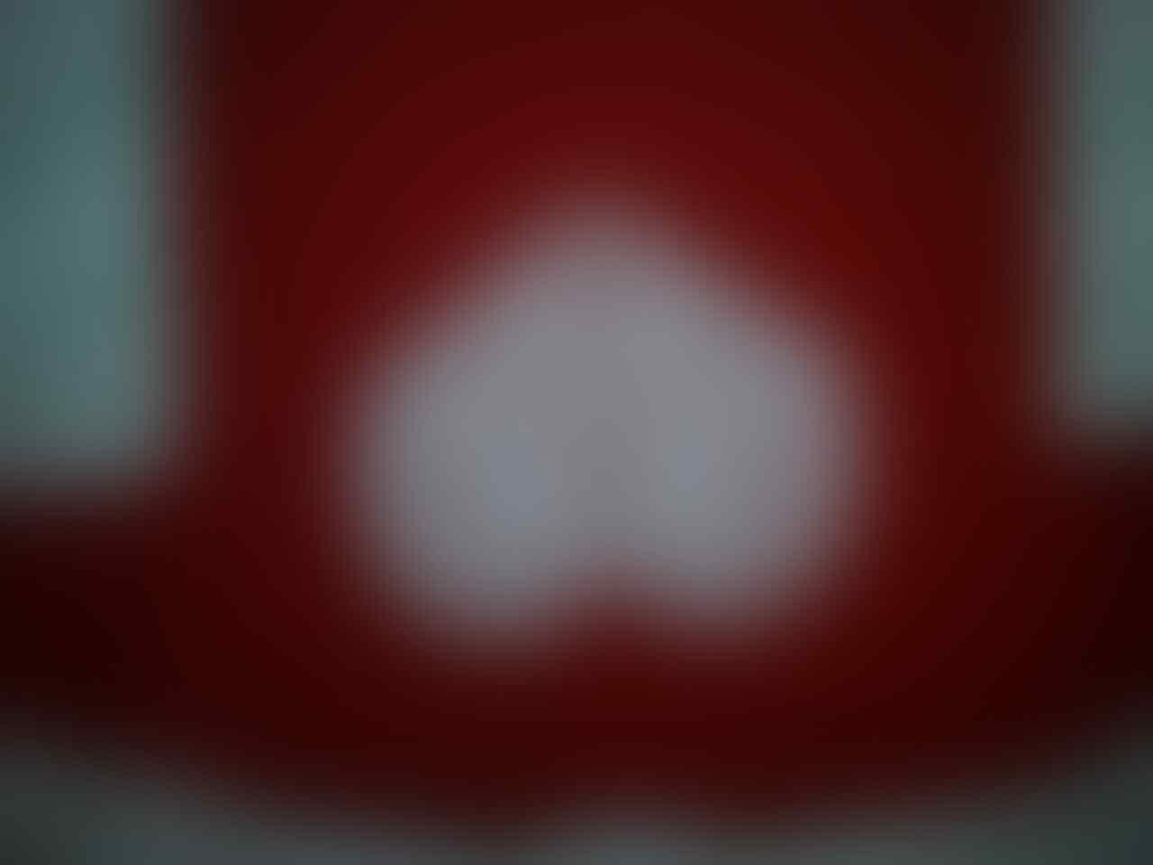 WTS T-SHIRT PWG INHERIT/RED