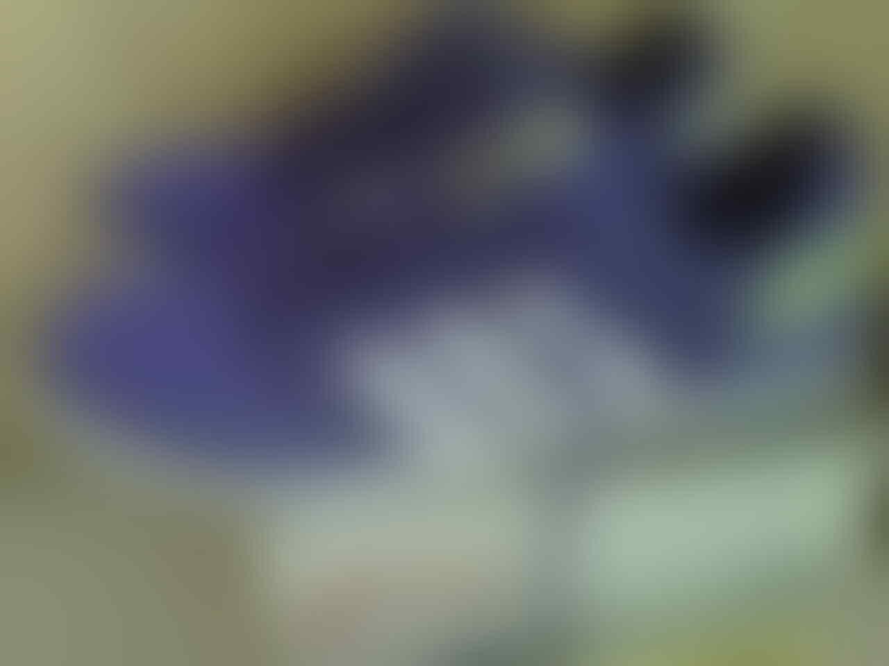 Sepatu Futsal Nike CTR 360 Libretto IC Volt/Green/Black