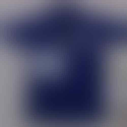 JUAL kaos PoLo CheLsea bLue size M Grade ORI