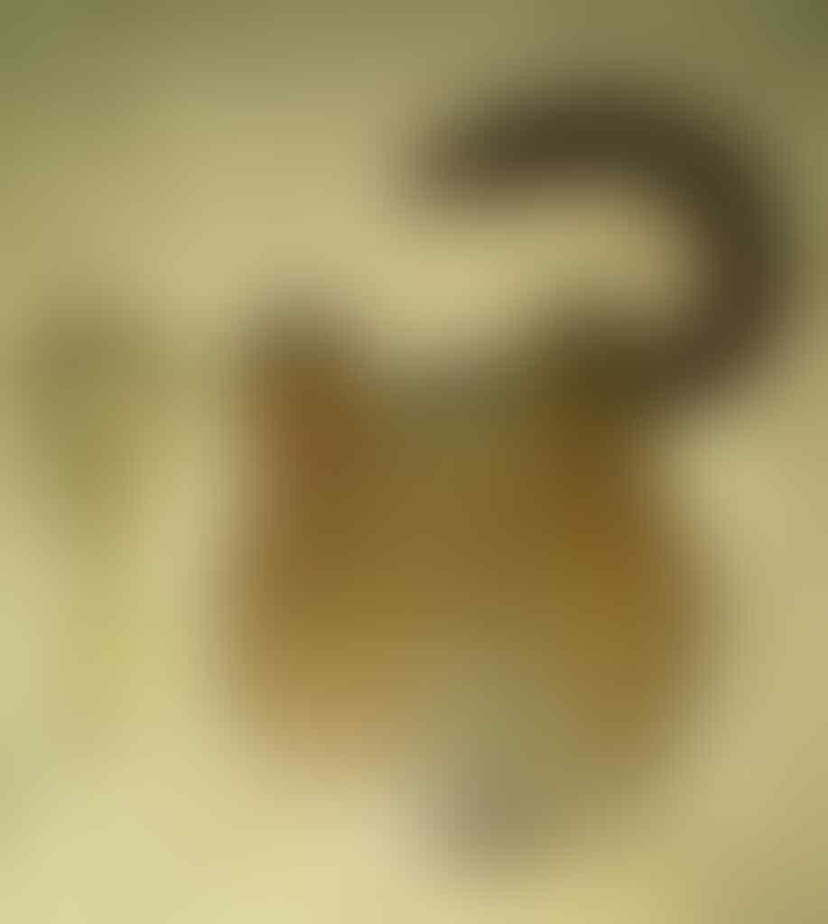 ₪ ★ BREAMAN BROTHERHOOD ★ ₪ - Part 4