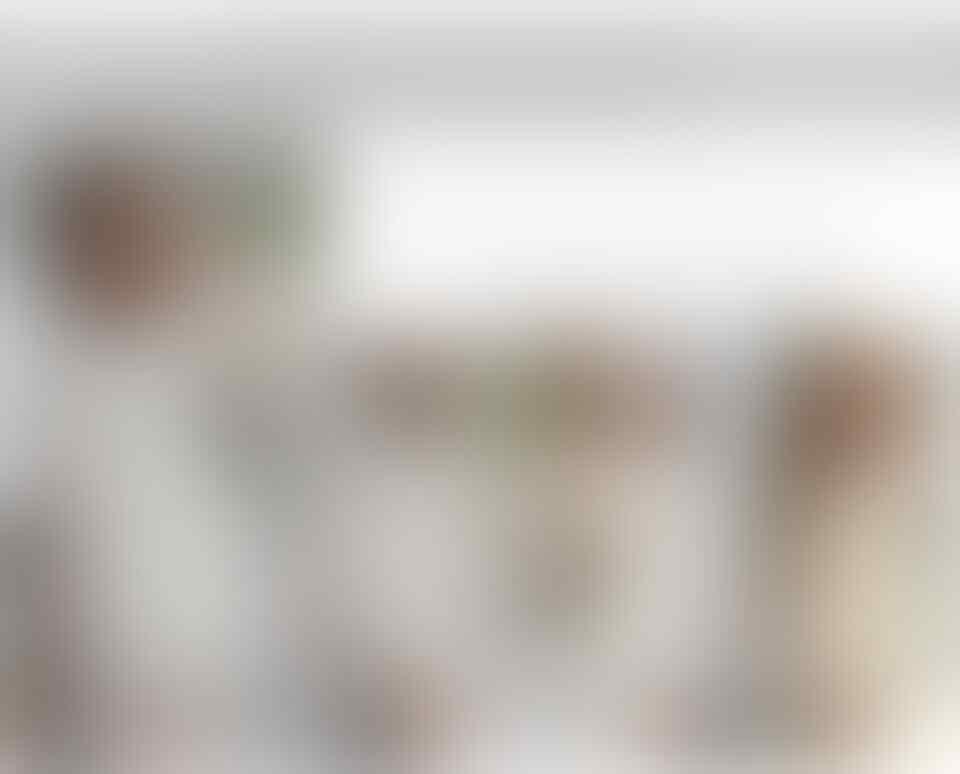 [stary] DICARI RESELLER UTK PAKAIAN WANITA IMPORT READY STOCK MURAH BISA DROPSHIP