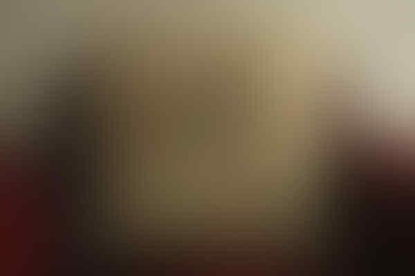 Jual Sarung Bantal dan Bantal Dacron