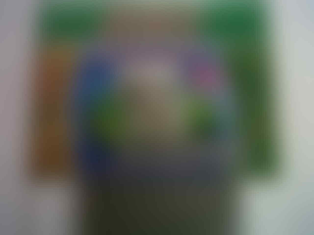 Terjual Fatih Aquarium Gex Perlengkapan Aquascape Kaskus Nikita Size L Ukuran 40 X 25 28cm