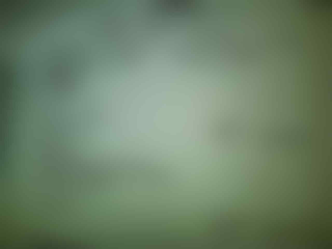 PROMO HOT ITEM !! Motorola Moto G 8Gb Dual Sim New Batangan Hp only Murah abisin stok