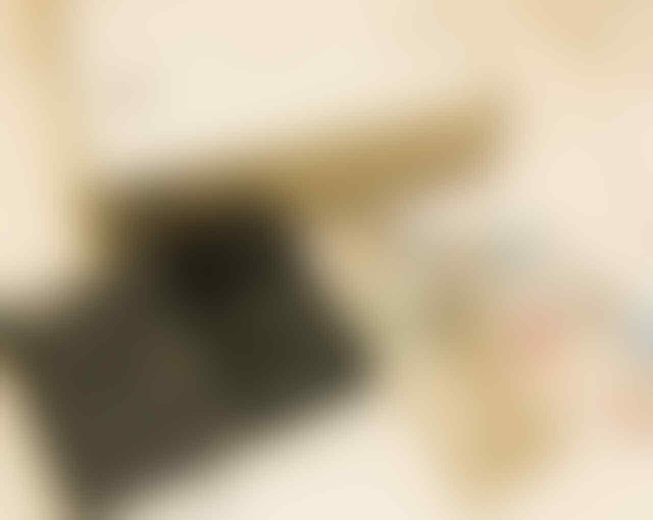 soundcard - CI2+ - steinberg