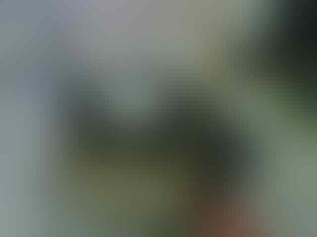 SPAREPART DAN ACCESSORIES MOTOR YAMAHA ASLI DAN TERLENGKAP
