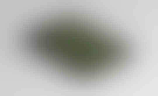 JASA DESAIN KARTU NAMA (BUSINESS CARD) DARI DESAINER-BLOGGER PROFESIONAL