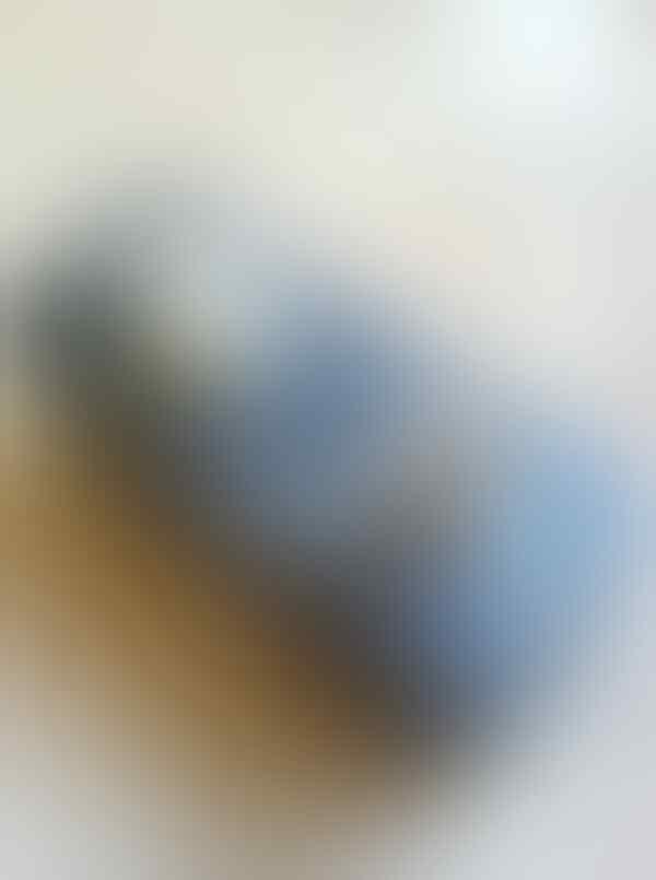 WTS : MOOER SHIMVERB murah!!!