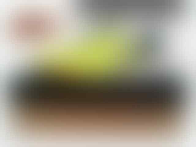72498f057e Terjual WTS SEPATU FUTSAL BOLA CASUAL ORIGINAL (CLEARENCE SALE)