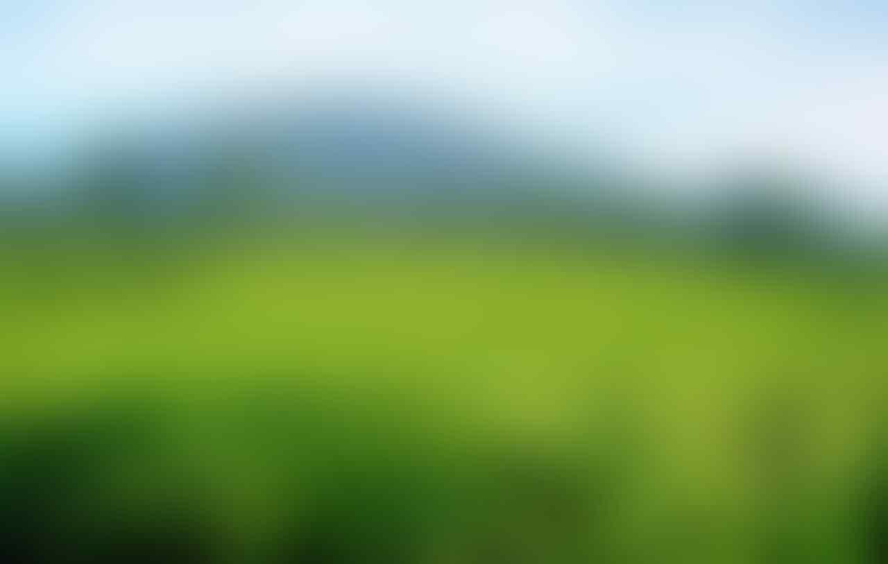 [BOGOR INFODESK] Informasi dan Pertanyaan Seputar Bogor Post Disini - Part 1