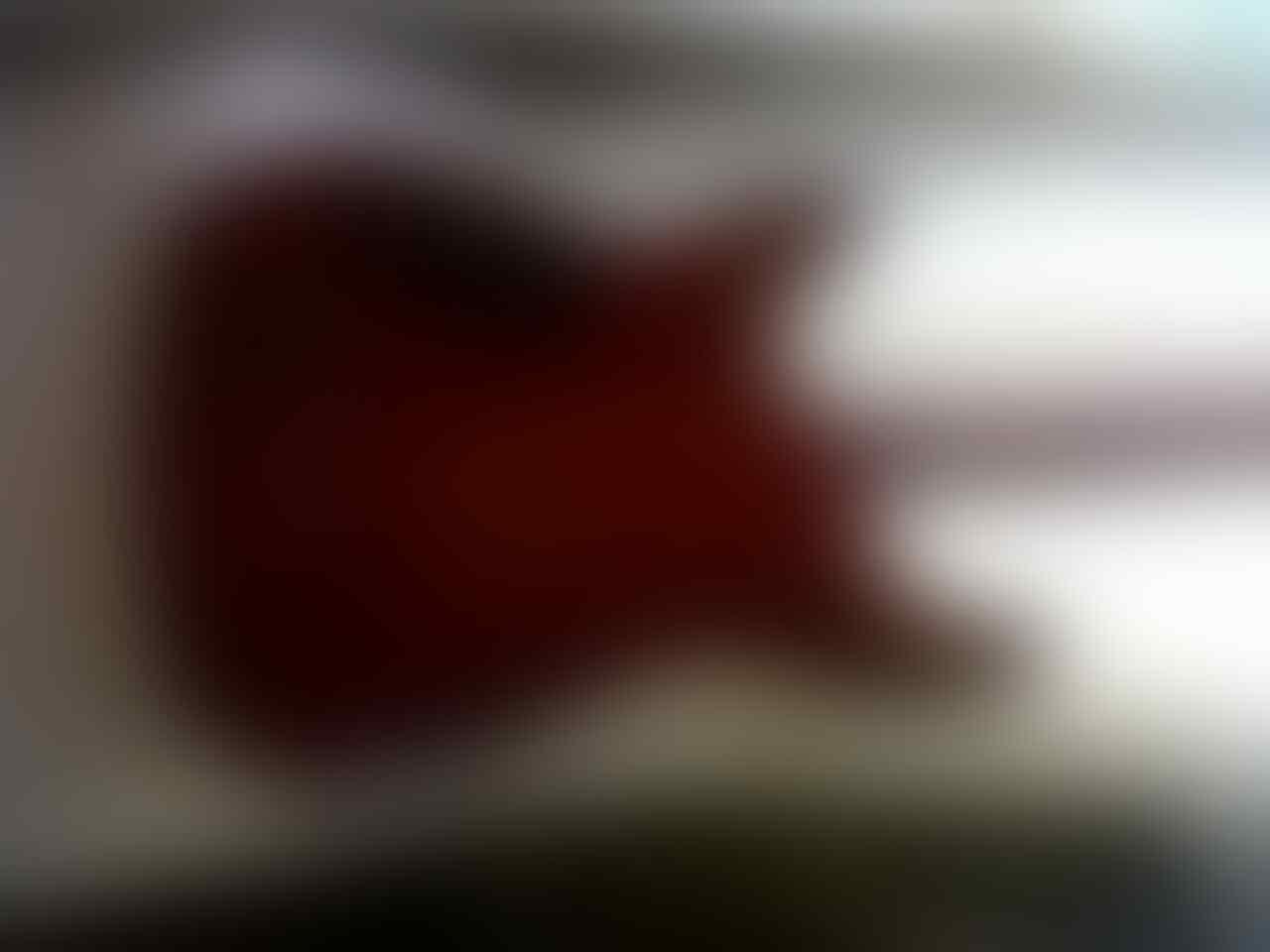 SCHECTER HELLRAISER C-1 SPECIAL FULL ORIGINAL....!!!! HARGA STRESS ...!!!!!!!!