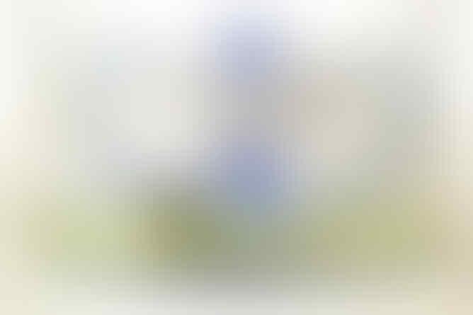 SHISA BONG BESAR 2 SELANG DAN MEDIUM 2 & 1 SELANG MINAT MASUK GAN!!!