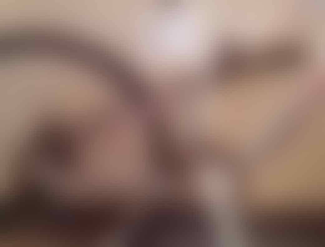 SEPEDA FULLSUS WIMCYCLE BOXER 4.1 MULUS
