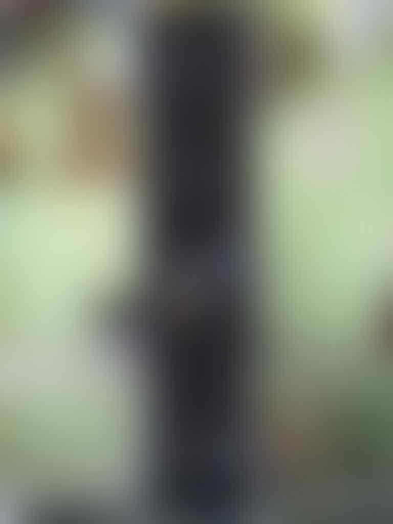ACER VERITON L480 C2D 2.93 BIG PERFORMA WITH THIN SPACE SLIM DESIGN