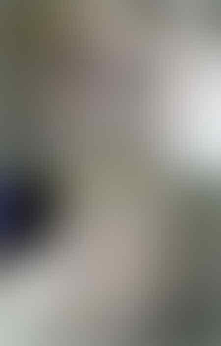 [Cara Membuat] ►► Filter Kolam Tong Biru DIY ◄◄
