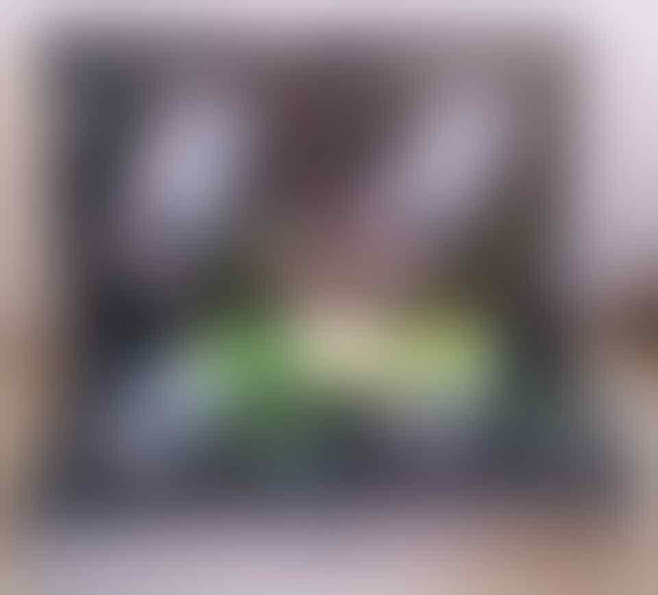 Tempered Glass Sony Xperia C,M2, Z, Z1, Z2, Z1 Compact, T2, dll [Nillkin,Tyrex,dll]