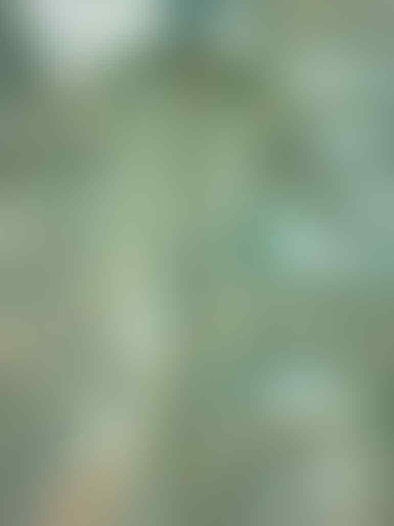 Jual : Jaket Anak 2nd berkualitas,ori dan mulus.