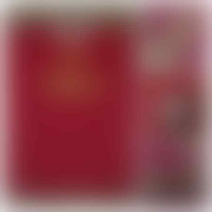 Jual Cepet Jersey Liverpool Home 00-01 Size L (inc.ongkir)