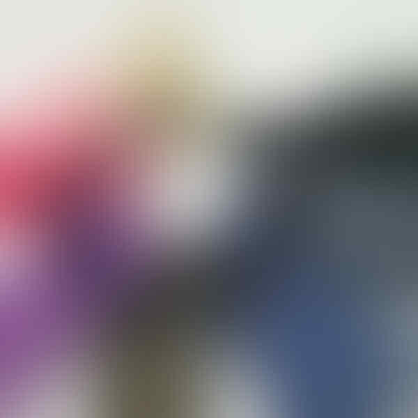 FLIP COVER VIEW SOFTCASE HARDCASE TEMPERED GLASS ASUS ZENFONE 5 DAN ZENFONE 6