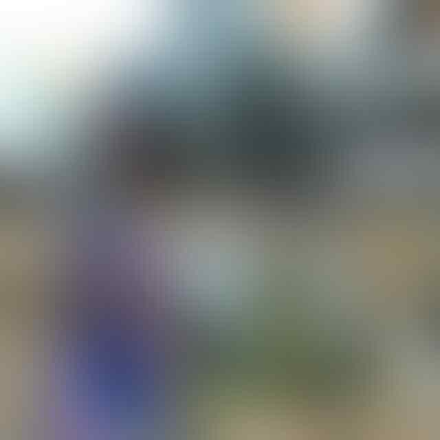 [PUSAT RESELLER] OBRAL SEPATU RUNNING LARI ADIDAS NIKE FREE 180RIBU