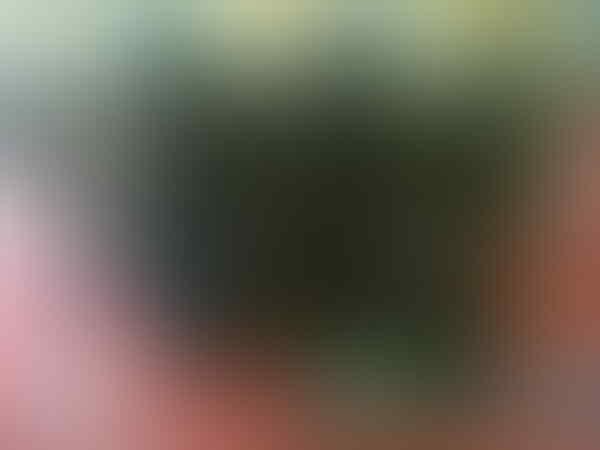 Runbo X1 versi terbaru Gsm/Cdma Bisa Walkie Talkie