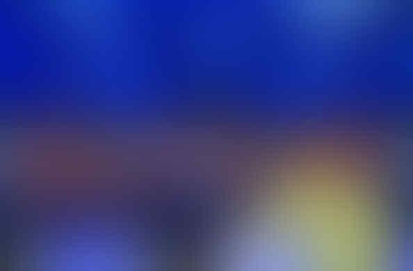 (PRE ORDER) Sweater Chelsea Training Champions League 2014/15 (CENDOL INSIDE !!!)