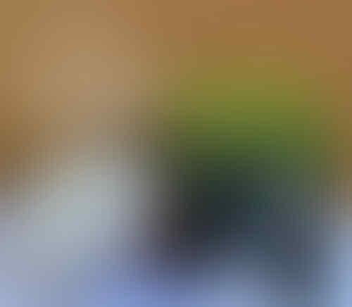 JUAL STRIP LIGHT LED MERK HILED UNTUK VARIASI AUDIO MOBIL