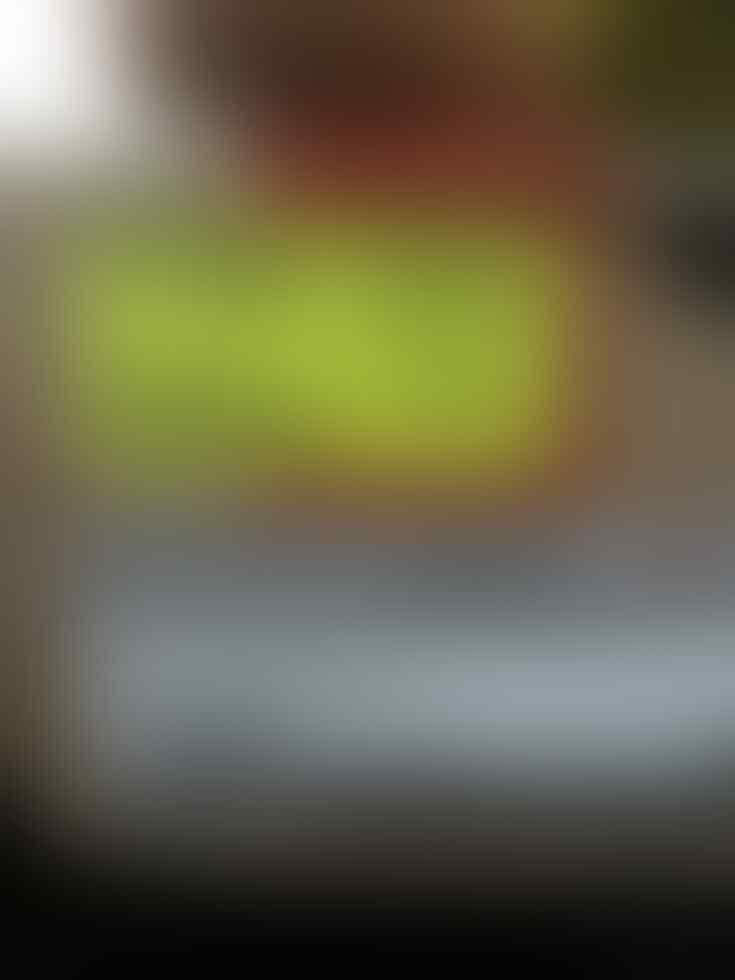 WTS Sepatu badminton Lining Titan Pluas Ngk Jadi Pakai