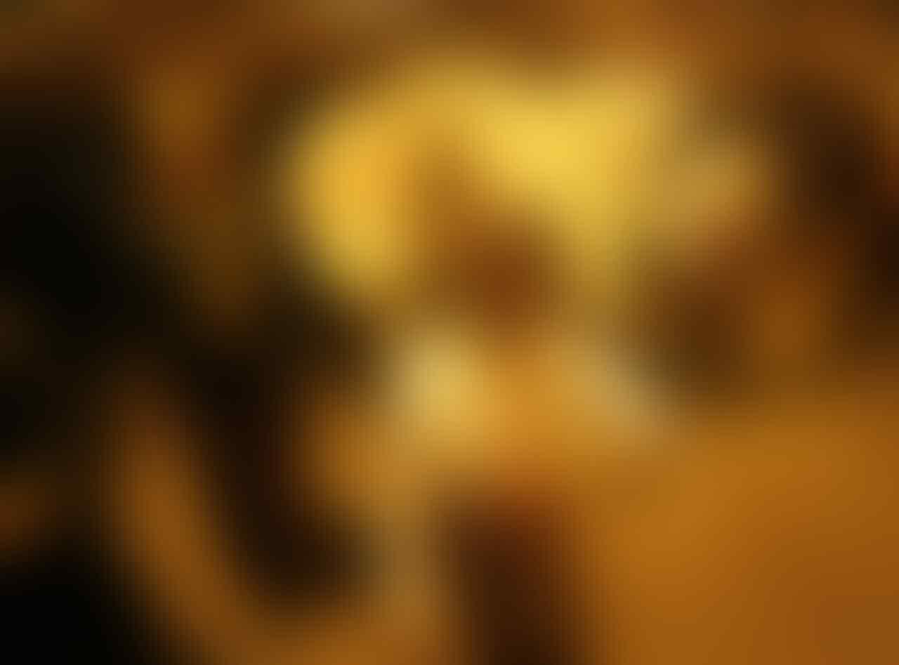 (Ekstrimis FPI kah??) Kerbau Bule Kiai Bagong Akhirnya Mati