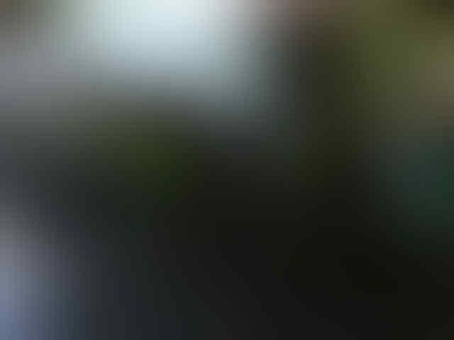 ★★★★★Kumpulan Feedback & Testimonial Bingo007★★★★★