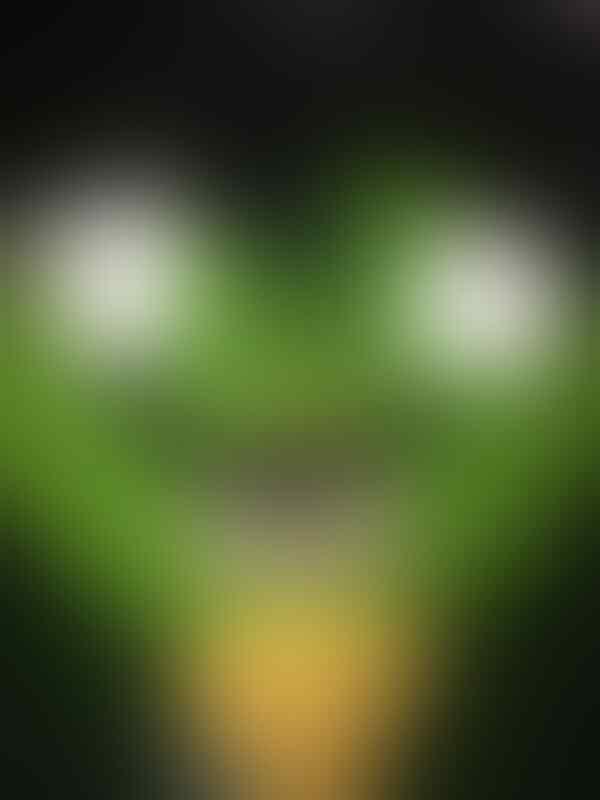 Iphone 5C Green 16GB Mulusss Muraaah Mantaaaap