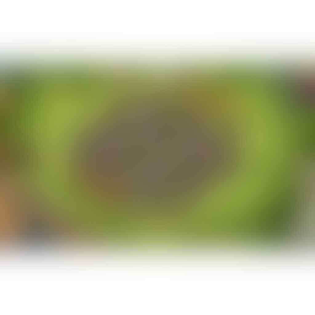 DIJUAL NEGO ID COC TH 9 LVL 89 GEMS 2200+