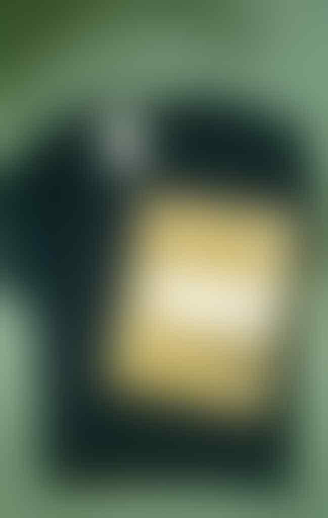 SEASON 41 : BAPE - SUPREME - GIVENCHY - OFF WHITE - BURLON- BURBERY-etc