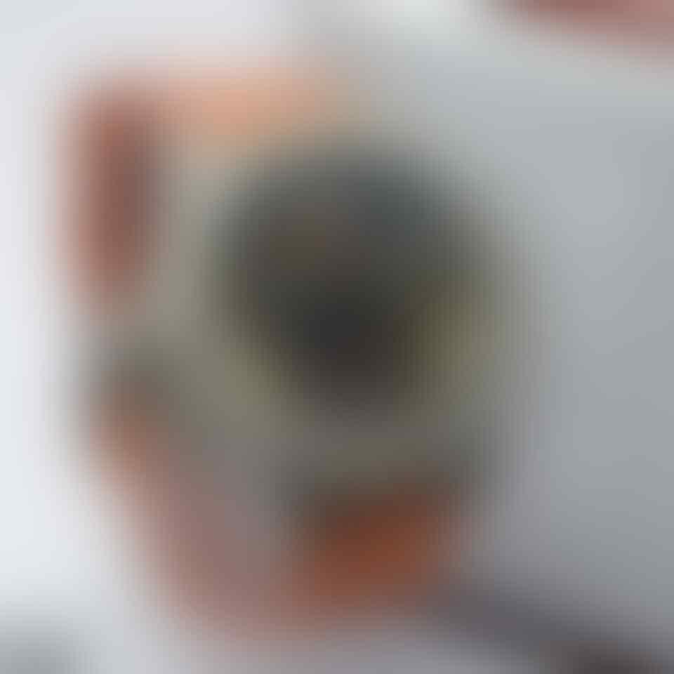 Terjual Agen Jam Tangan Alexandre Christie Dan Levis 100 Original Pria 6324 Silver Hitam Originalterpecaya Terupdate