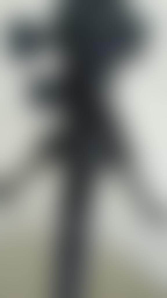 tripod kamera foto pro Benro A1681 TB0