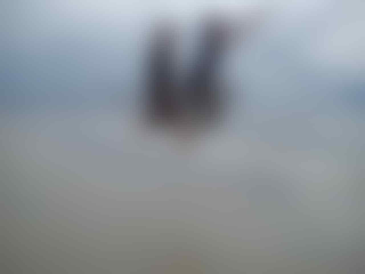 yuk rame-rame keacara mandi safar di pulau rupat