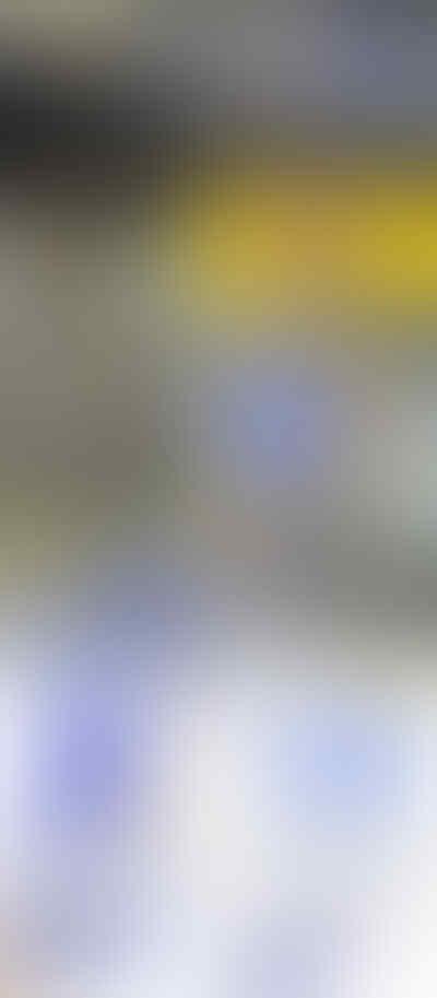 PUSAT DOOR GUARD - BUMPER GUARD - EKSTERIOR - DLL - CAMPUR2 - MURAHHH !!!!!!!