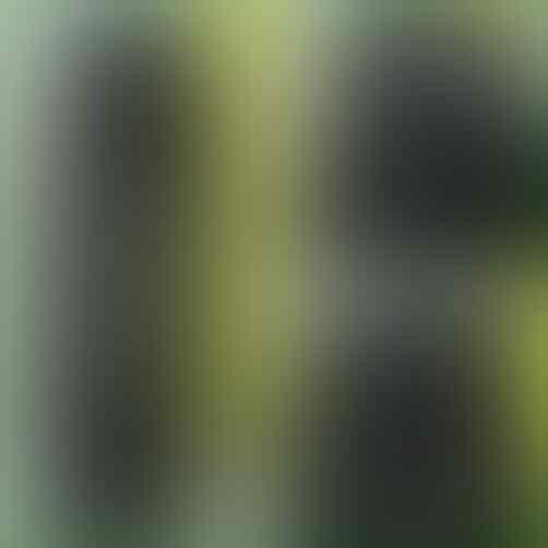 Celana Jeans Levis 505 Size 28-44,Wrangler,Lois Standar&Skinny