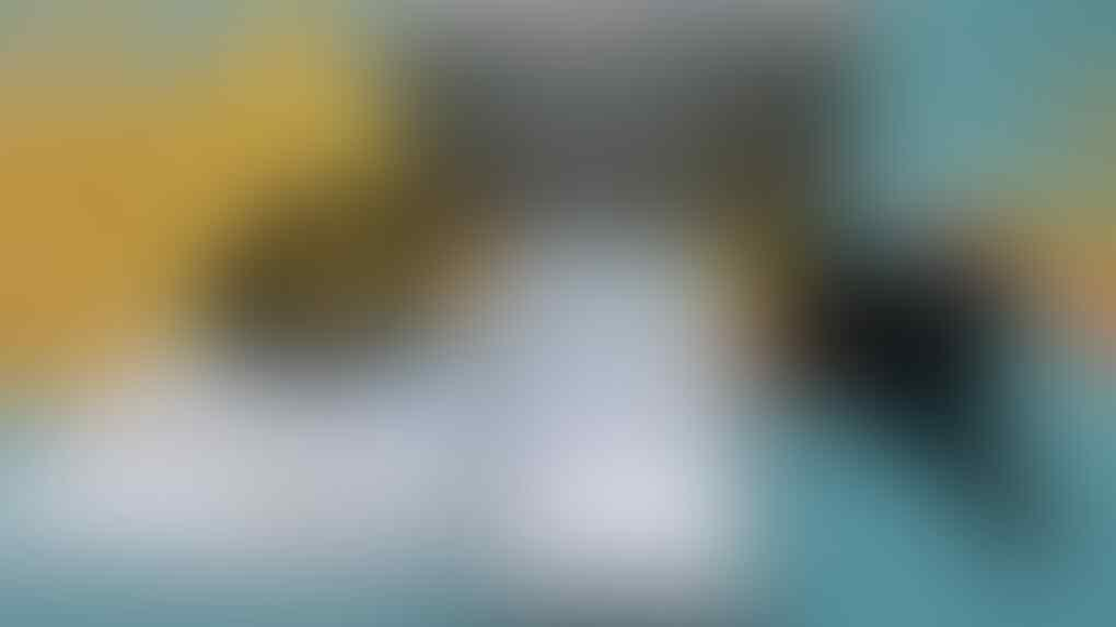 SAMSUNG GALAXY S2 HD LTE FULLSET MULUS NORMAL MURAH 1150 SAJA [MALANG]