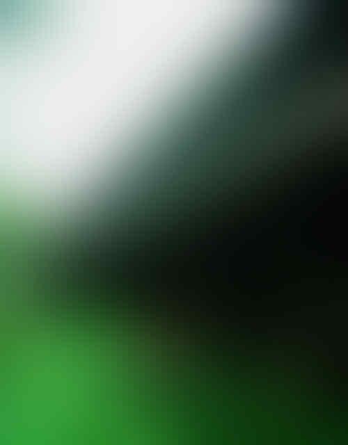 Kapuas Hulu : Bumi Uncak Kapuas - Part 1