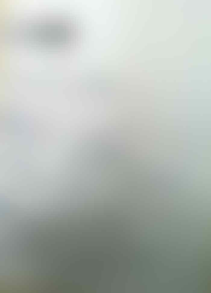 iPhone 5 White 16gb & iPhone 5s White 32gb [ Second Kumplit COD Bandung ] ORI !!!!