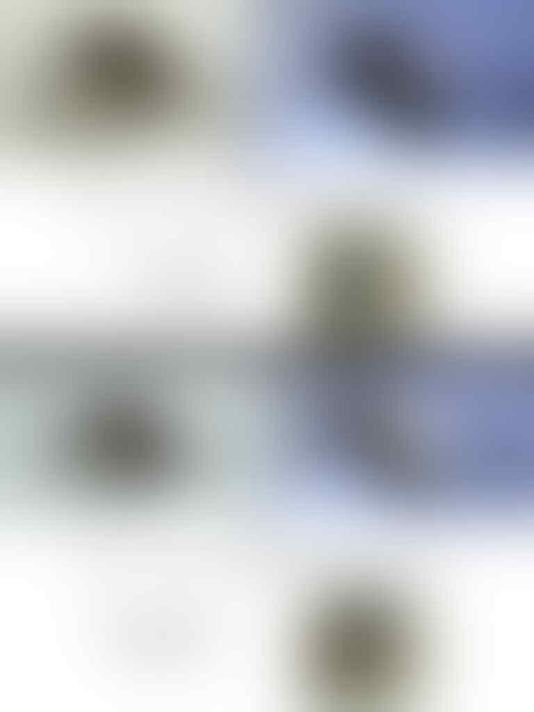 LELANG BATU + CINCIN BLACK OPAL + BONUS OB 100 RIBU