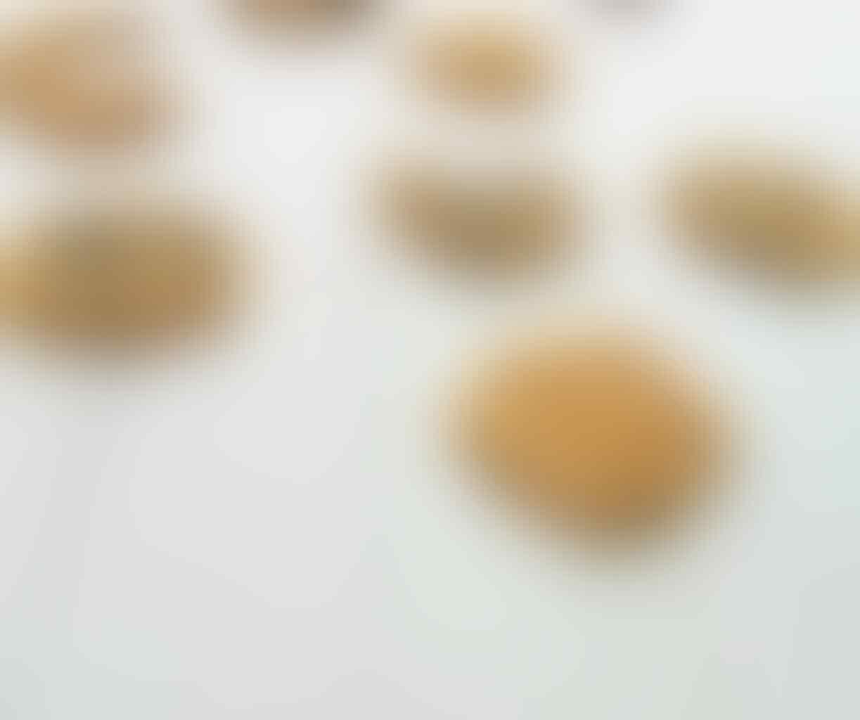 "dessert homemade ""Pannacotta"""